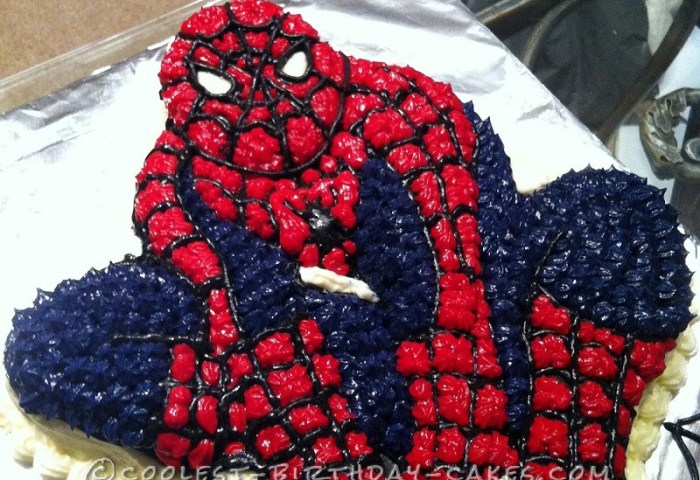 Spider Man Birthday Cake For My 5 Year Old Spiderman