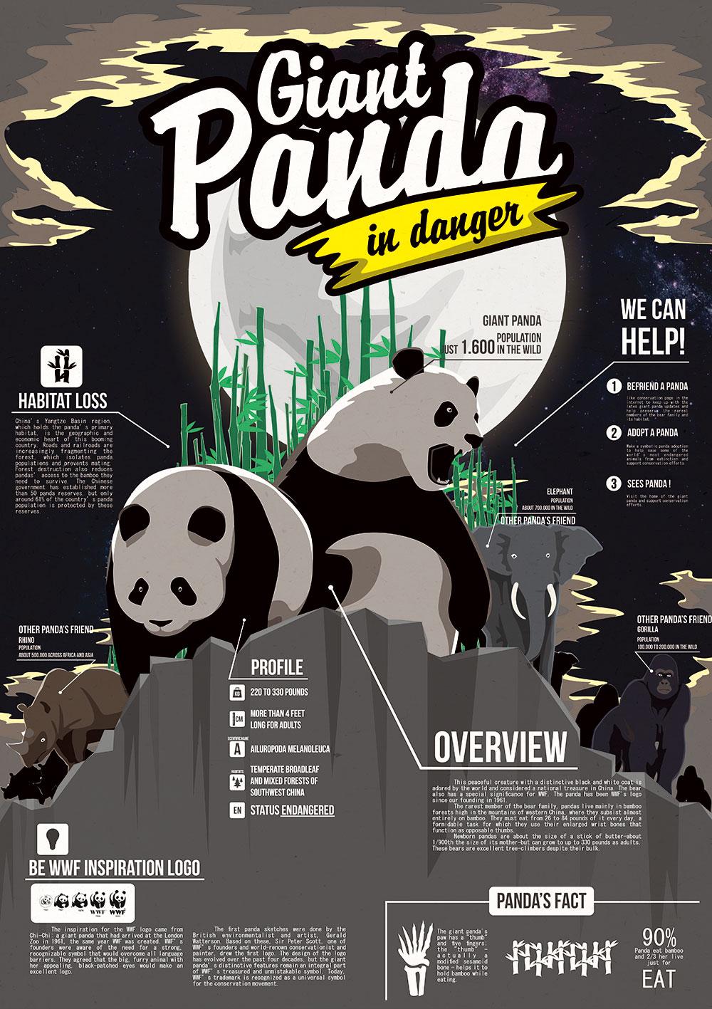 Infographic Panda's waarom zijn er zo weinig
