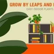 planten die gemakkelijk binnen glijden