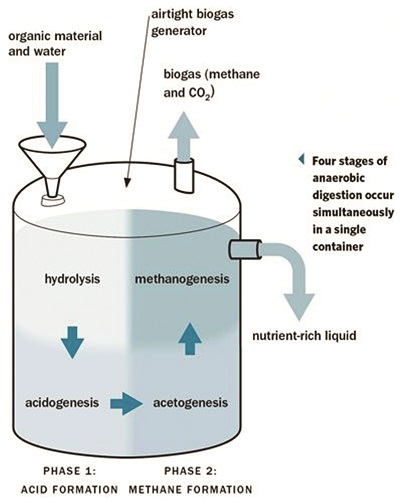 Efficiency Of Biogas Plant