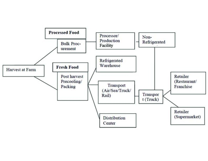Process In Cold Chain Supply Of Food