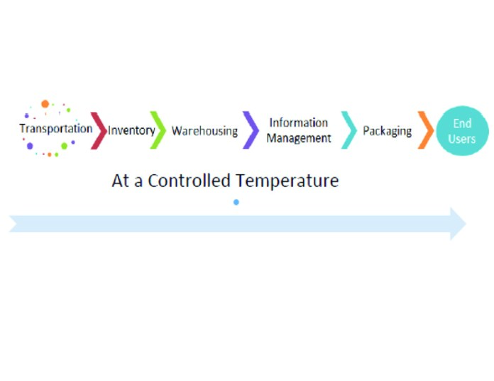 The Cold Chain Supply Network