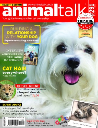 Animaltalk magazine - march - 2019