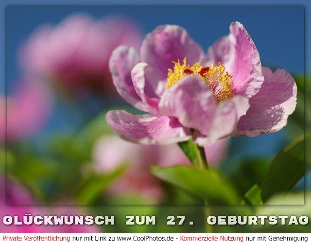 Coolphotos De Grusskarten Gluckwunsch Zum 27 Geburtstag