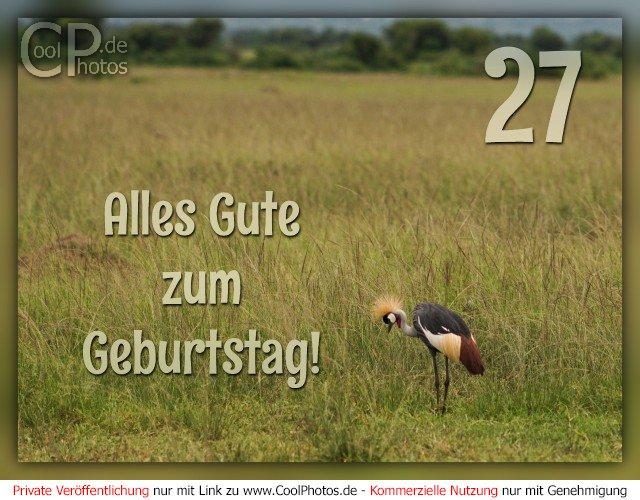 Glucklicher 27 Geburtstag Wort Wolke Collage Konzept Lizenzfrei