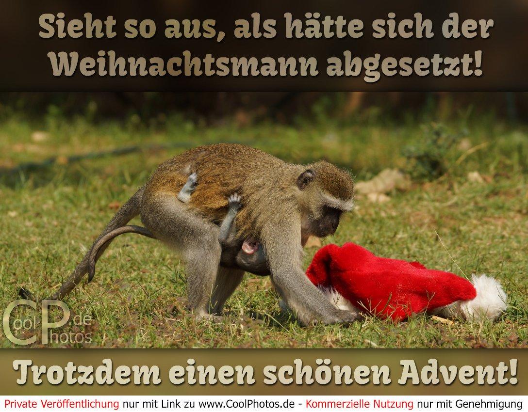 1 Advent Bilder Lustig 1 Advent Facebook Bilder