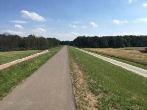 Deichradweg zwischen Aken und Lödderitz