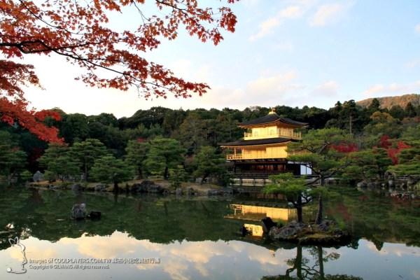 京都~秋天的金閣寺 @麻吉小兔吃貨旅行團