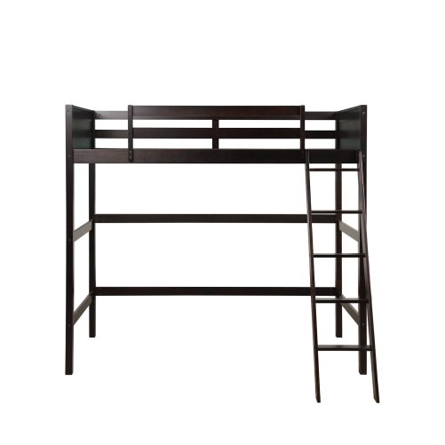 Solid Wood Twin Size Loft Bed Panel Style Loft Bed,Side Angled Ladder 7