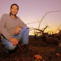 Nacho León | Demencia Wine