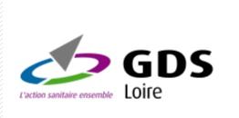 GDS Loire