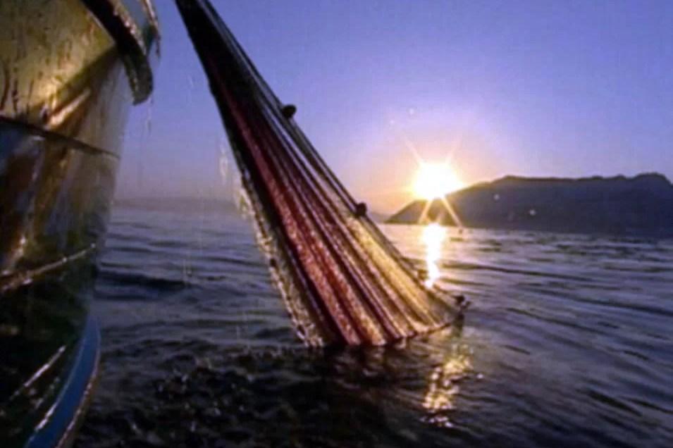 Lamparata e Pesca Turismo