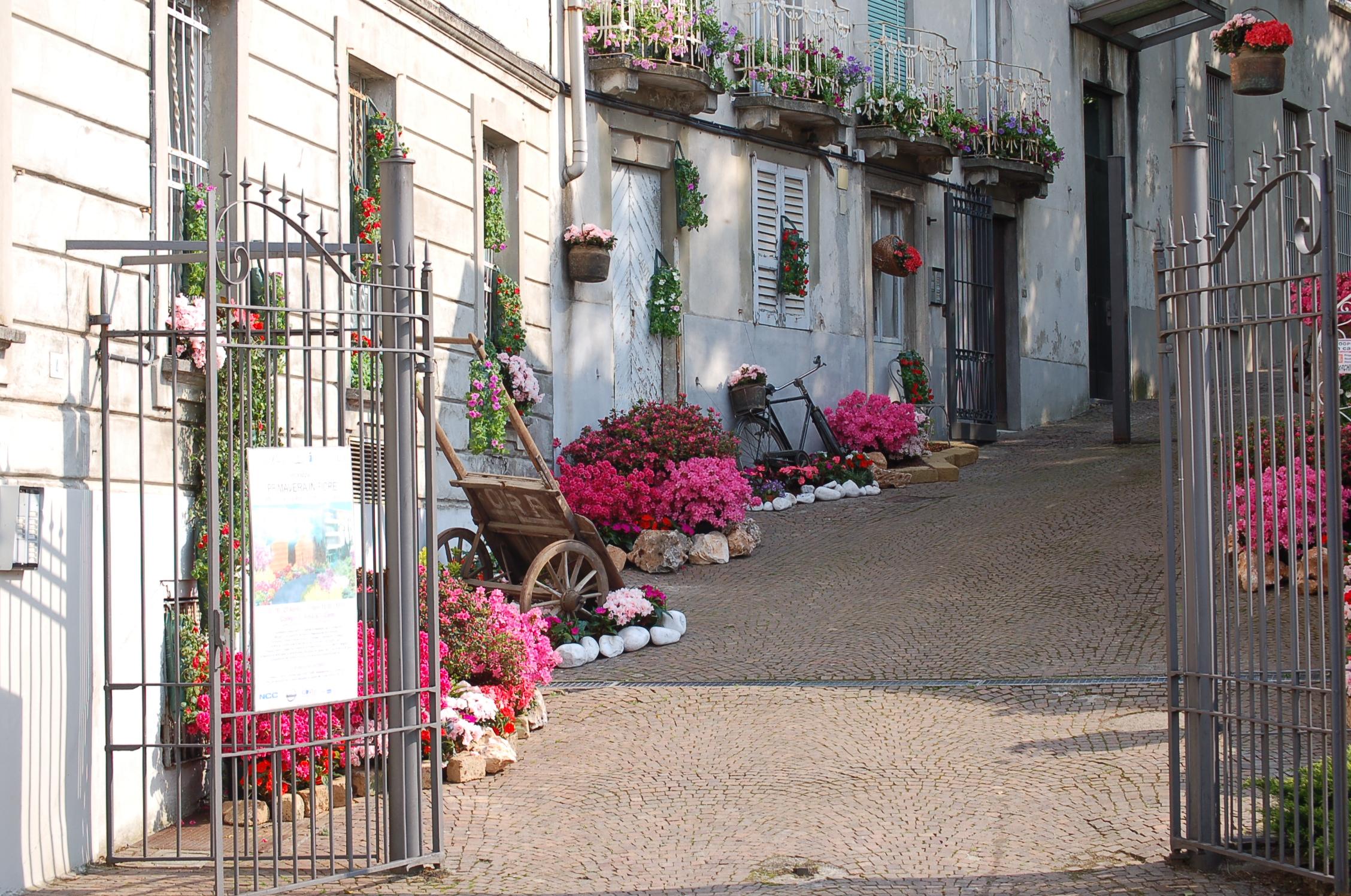 Primavera in fiore al Collegio De Amicis, Cantù