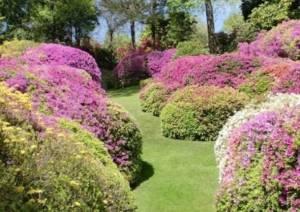 Riaprono gli orti botanici della Lombardia