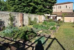 A Mantova rinasce l'orto di Carlo Magno. Frutti antichi ed erbe officinali tra le mura di un monastero