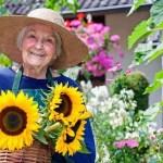 I molteplici benefici fisici e psicologici che la cura delle piante ci offre