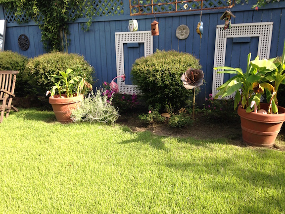 Flashback October 2015: Yard Of Month