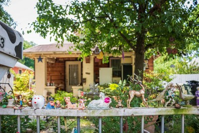 Nancy Apple's garden (Kenzie Campbell pic)