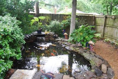 John + Ty's pond