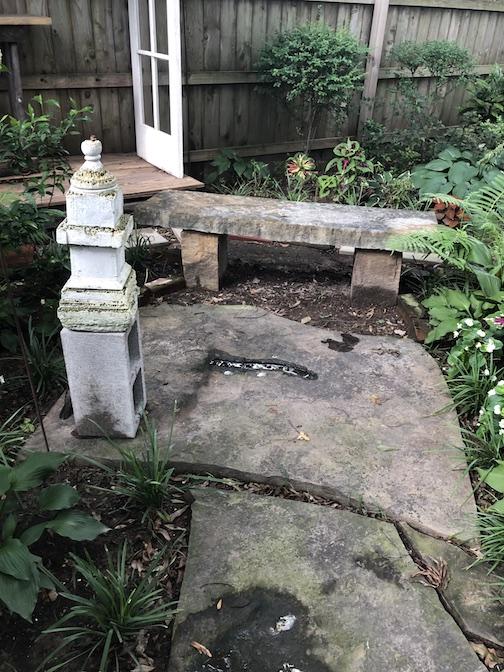 Chris Harris garden
