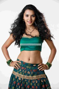 Sindhu_Loknath_Hot_Navel_Photos_1