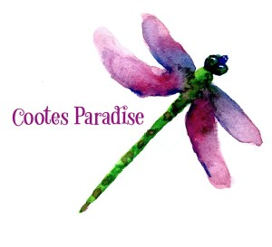 Cootes Paradise CD Cover