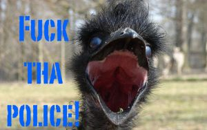 Police Harass, Detain and Place Emu In Custody of Traffickers