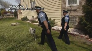 GRAPHIC VIDEO: Body-Cam Footage Released of Topeka Police Officer Shooting Dog