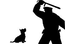 Police Kill Dogs