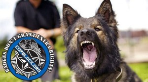 Woman Has Lip Torn Open By Police Dog While Sleeping On Couch