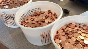 When Paying A Fine In Pennies Warrants Police Attention (VIDEO)