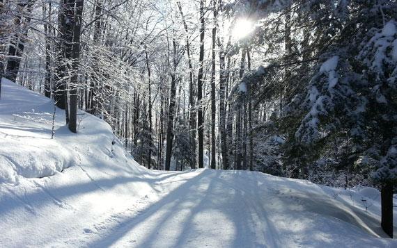 Copeland Nordic Ski trail