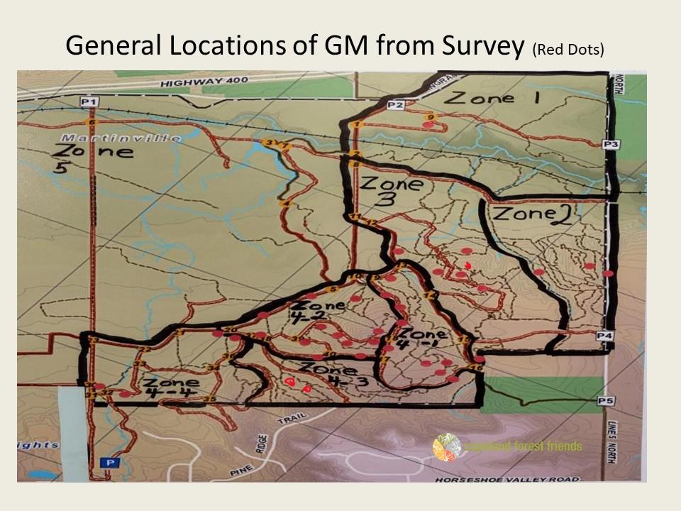 GM-Slide4