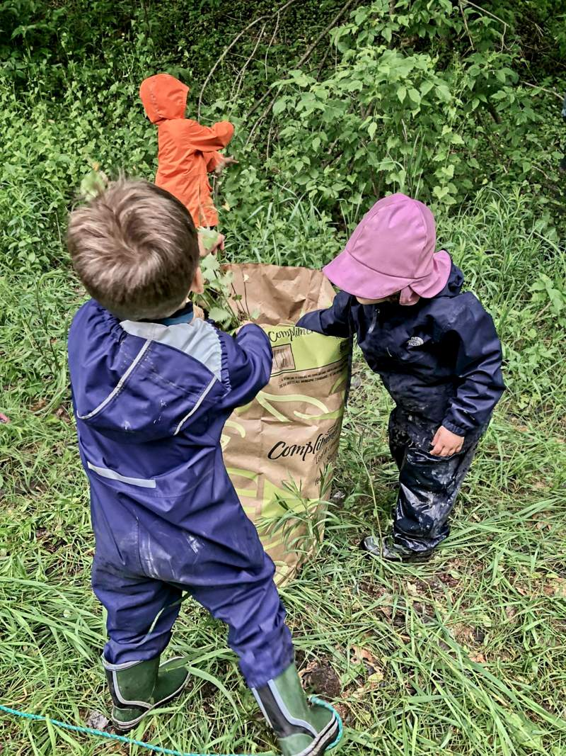 three young children help collect the invasive garlic mustard plants pulled by volunteers