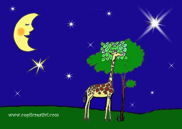 girafa dormind sub stele noptii1