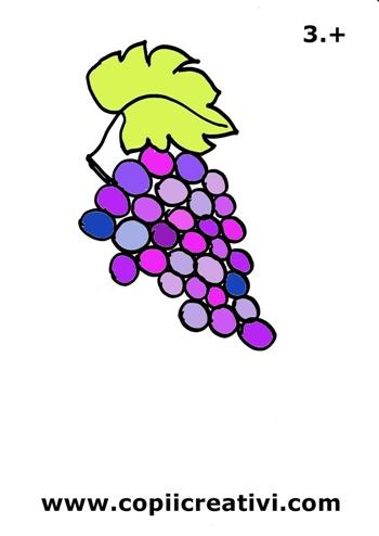 strugure colorat  350