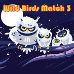 Wild Birds Match 3