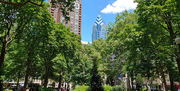 Rittenhouse Sml