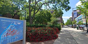 University City Sml