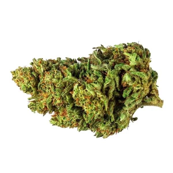 Hemp CBD Flower Pre-Rolls (Elektra Strain) - Copper Mountain