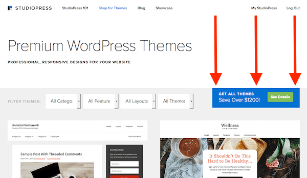 Click here to get 30% off the Pro Plus All-Theme Package