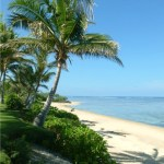 Beach at Bedarra Beach Inn