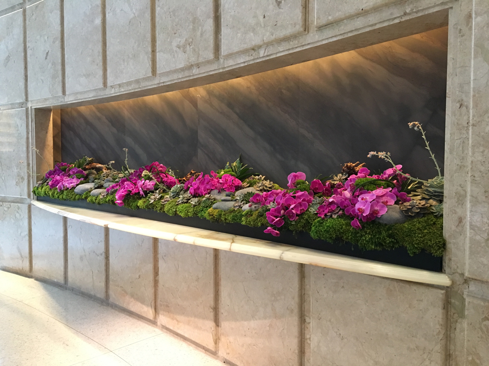 Eden Roc Hotel in South Beach, Miami wall terrarium installation