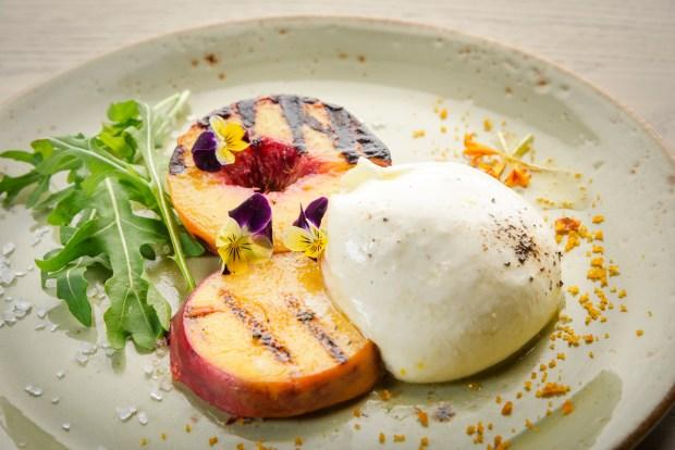 Zucca Coral Gables Restaurant Peach Burrata