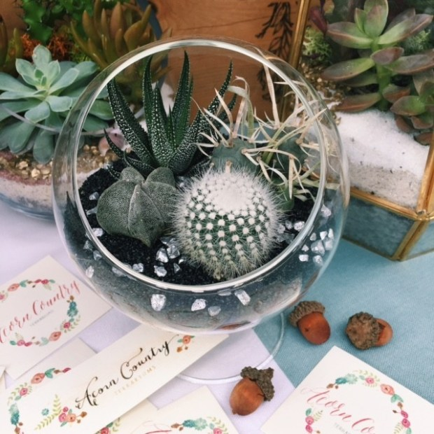 Acorn Country Terrariums vendor at Hatch Miami in Coral Gables