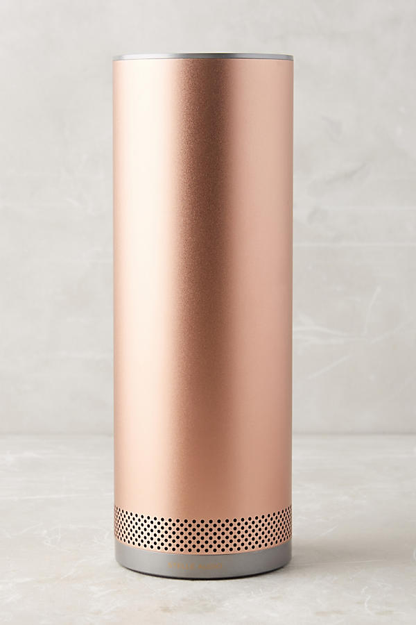 Stylish Portable Wireless Speaker in Rose Gold