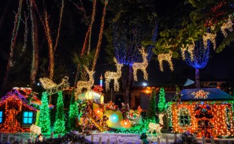 Holiday Date Night Ideas in Coral Gables, coral gables, coral gables love, Date night ideas in Coral Gables, date night, hot date