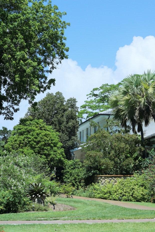 Outdoor Yoga at Fairchild Tropical Botanic Garden in Coral Gables, Florida - Miami