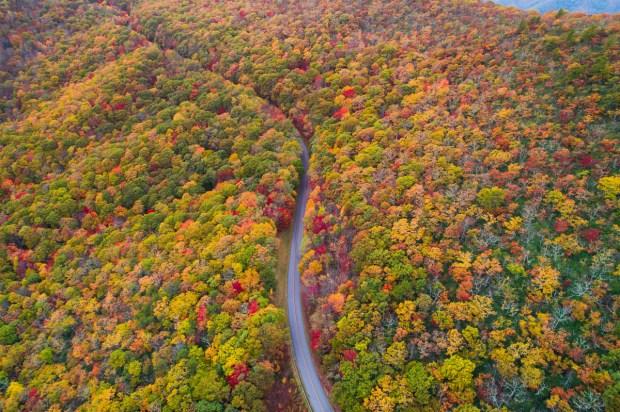 Asheville North Carolina Travel Guide - Fall Foliage