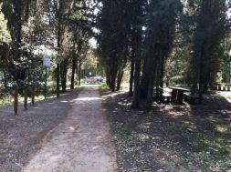 Riqualificazione Parco della Trinità: il punto sui lavori e cosa ancora c'è da fare 12